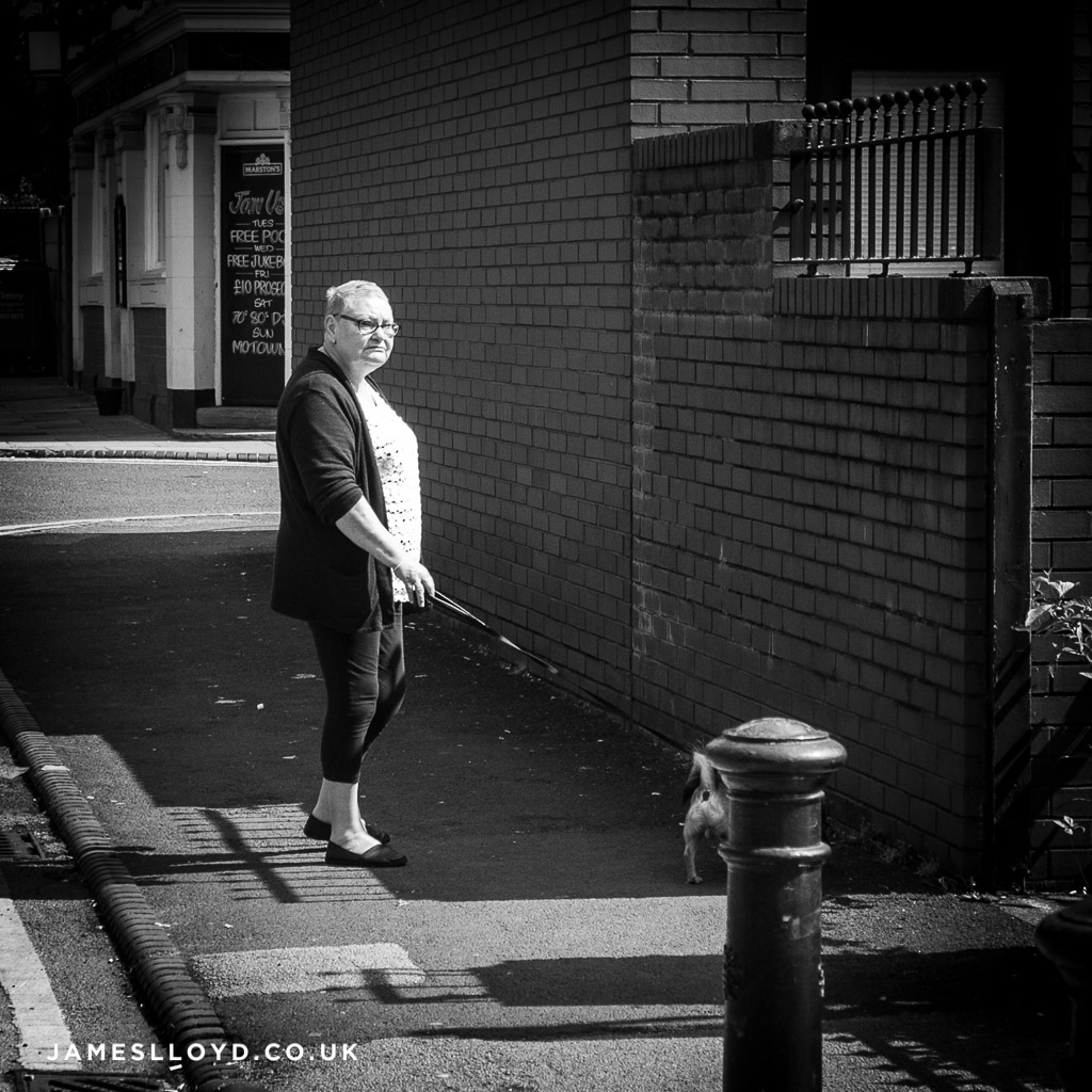 Walking the dog, Manchester